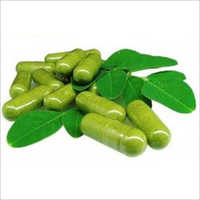 Herbal Moringa Products