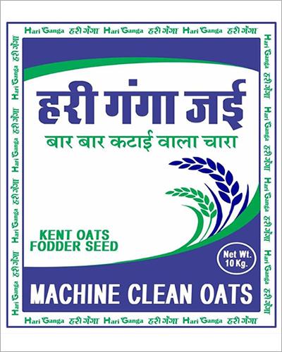 10 Kg Kent Oats Fodder Seeds