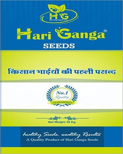 Hari Ganga Agriculture Grain Seeds