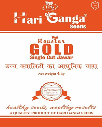 Gold Single Cut Jowar Seeds
