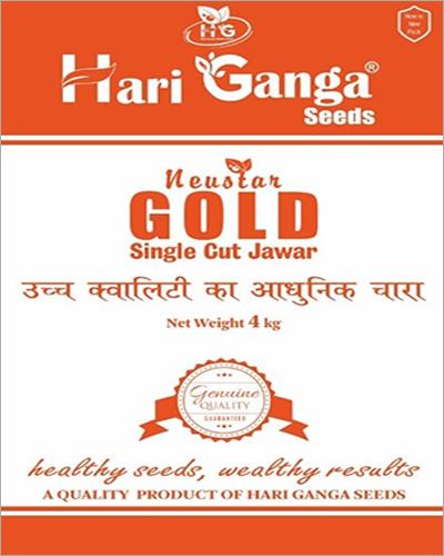 Gold Single Cut Jowar Seeds