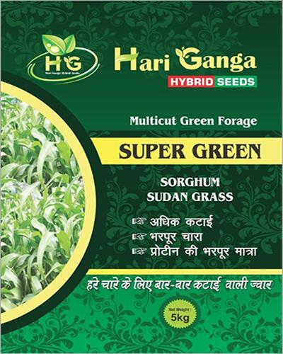 Multicut Green Forage Sorghum Seeds