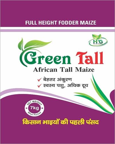 7 Kg Green Tall African Tall Maize Seeds
