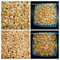 BLANCH ROASTED PEANUT WHOLE
