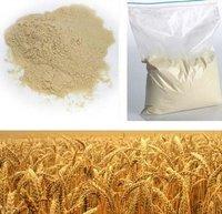 Dry Barley Malt