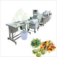 Salad Cutting Washing Vegetable Machine