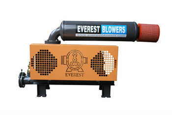 Twin Lobe Air Blower