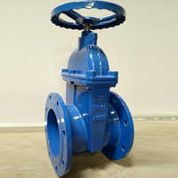 Industrial Ductile Iron Valve