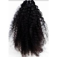 Virgin Indian Human Hair Cuticle Aligned Hair Curly hair