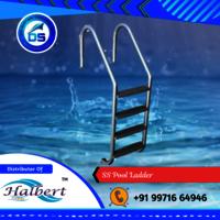 SS Pool Ladder