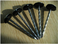 Hot sale - Roofing Nail with rubber