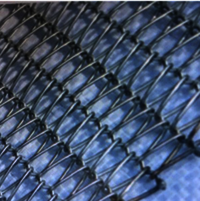 Drive Balanced Weave Wire Mesh Belt