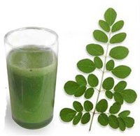 Moringa Fresh Leaves Juice with Natural Flavor