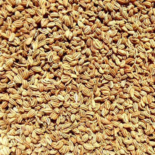 Celery Powder (Ajwain)