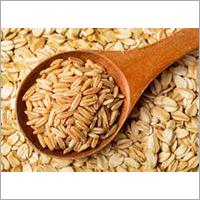 Grain Distillery Enzyme