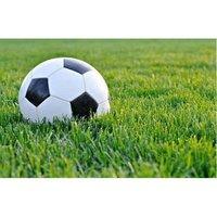 FIFA Quality Artificial Grass