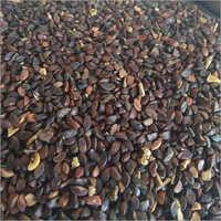 Avla seeds