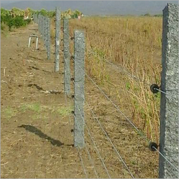 Agriculture Solar Fence