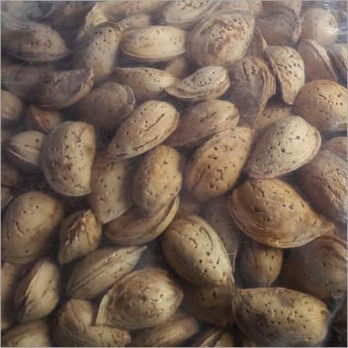 Shell Almond