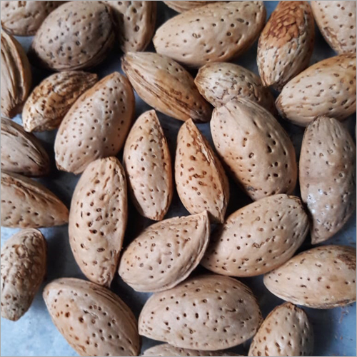 Kashmiri Shell Almond
