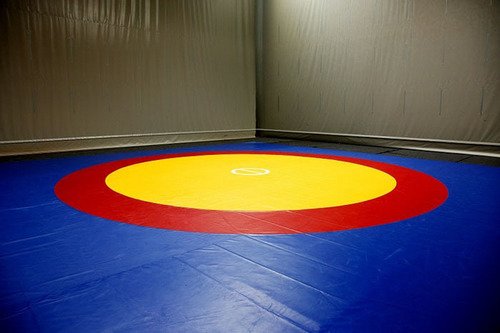 Wrestling Mat Cover Painted