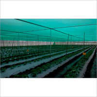 Nursery Plant House Net