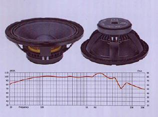 12 BNC 200 & 300 Voice Coil