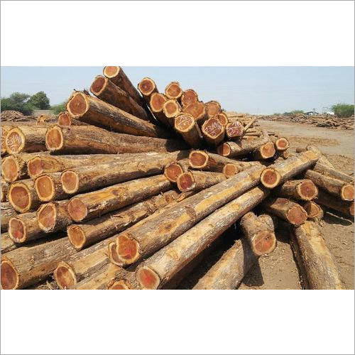 Sangwan Wood Log