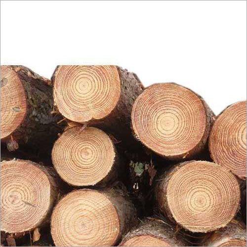 Ghana Wood Log
