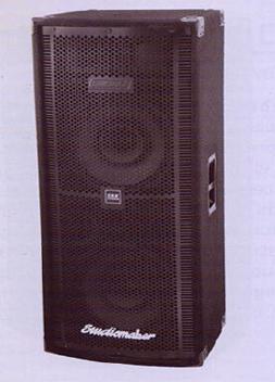 SRX 350 Passive PA Wooden Speaker System