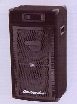 SRX 250 Passive PA Wooden Speaker System