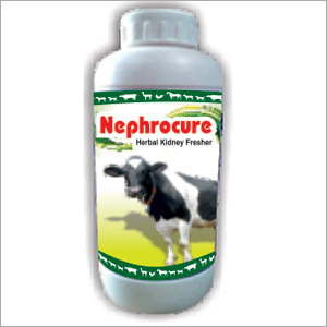 Nephrotake -l Herbal anti Gout and Diuretic