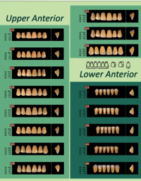 Prestorock 2 Layer Acrylic Teeth