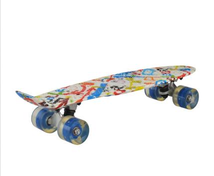Skate Board TE-564-22