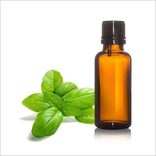 Basil Oil Sweet