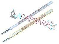 Clinical Thermometer (Laboratory Glassware)