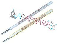 Clinical Thermometer (Laboratory Glassware)