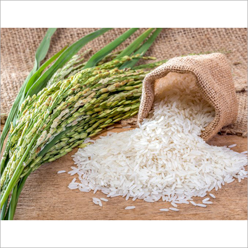 Indian Long Grain White Raw Rice