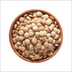 White Pea Beans