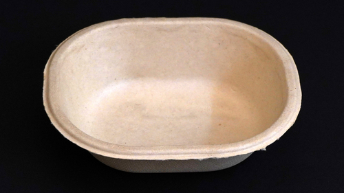 Disposable Bagasse Bowl