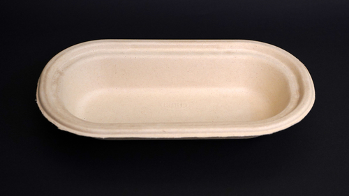 Bagasse Food Container