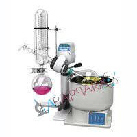 Rotary Vacuum Flash Evaporator (Digital Model)