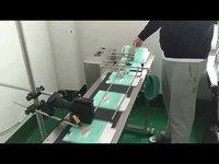 Automatic Batch Coding Machine
