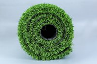 Double Color Spring Grass