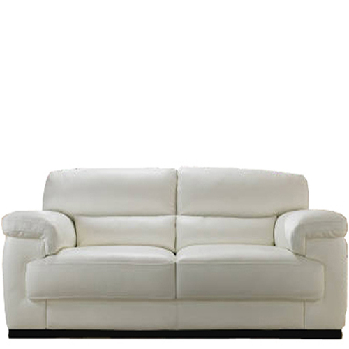 Two Seater Cushion Leather Sofa