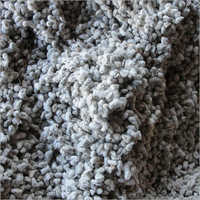 Natural Cotton Seed