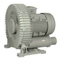 Regenerative Blowers