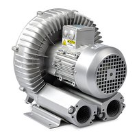 Lateral Channel Blowers