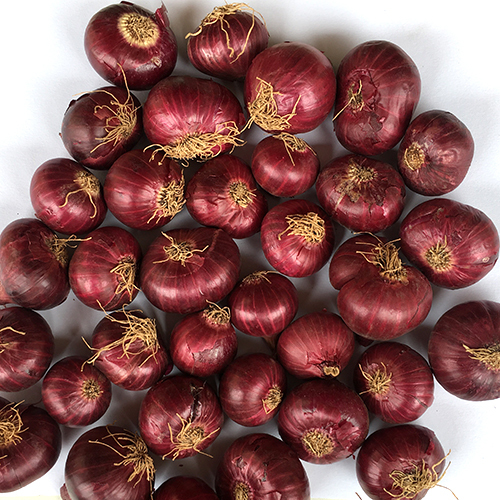 Krishnapuram Rose Onions