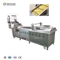 PT-2000 Industrial Automatic Vegetable french fries Blanching Machine